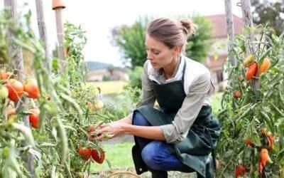 """ISMEA lancia """"Donne in campo"""", agevolazioni per l'imprenditoria femminile in agricoltura"""